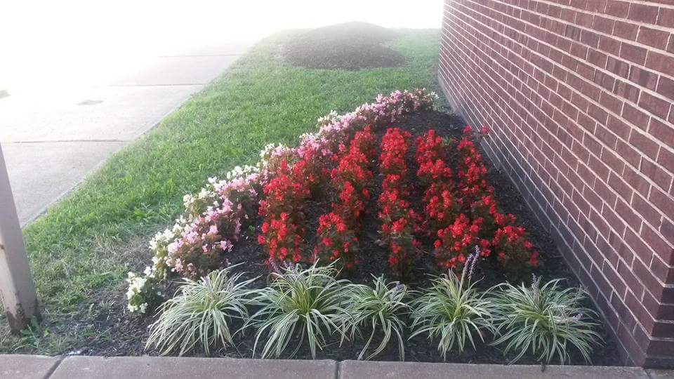 - Gallery – First Choice Landscaping